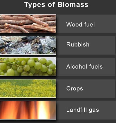 http://torrance4biomass.files.wordpress.com/2008/04/types-of-biomass.jpg